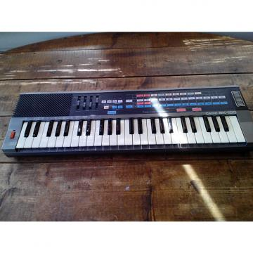 Custom Casio SK-100 Sampling Keyboard