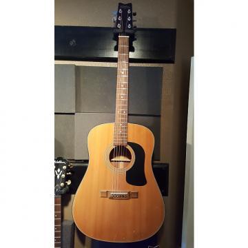 Custom Washburn D12N Acoustic Electric Guitar