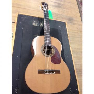 Custom Sunlite  Nylon Acoustic