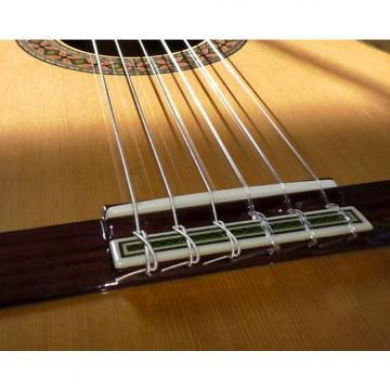 Custom Alhambra Guitars 8P classical guitar with case & shipping