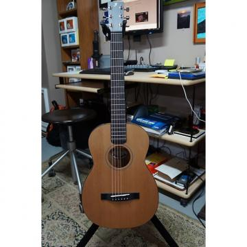 Custom Furch  LJ10 Little Jane Travel Guitar