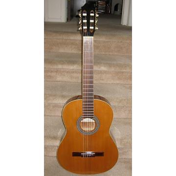 Custom Antonio Hermosa Cedar Top Classical Guitar