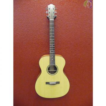 Custom Teton STG100NT Satin Finish, Acoustic Guitar, Free Shipping