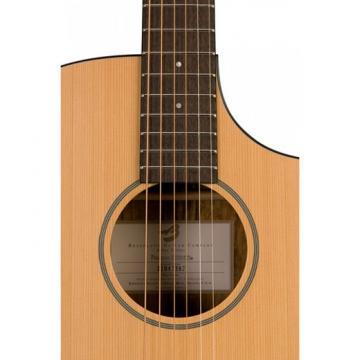 Breedlove Model Passport C250/COE Acoustic Electric Guitar WITH Gigbag