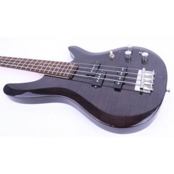 Custom Shop 4 String Tiger Maple Top Electric Guitar