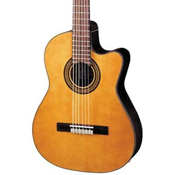 Ibanez GA6CE Amber Electro Classical Guitar With Guitar Bag, Guitar Stand, Snark SN5X Clip-On Tuner & Violin And Custom Designed Instrument Cloth