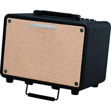 Ibanez Troubadour T30 30W Acoustic Combo Amp Black