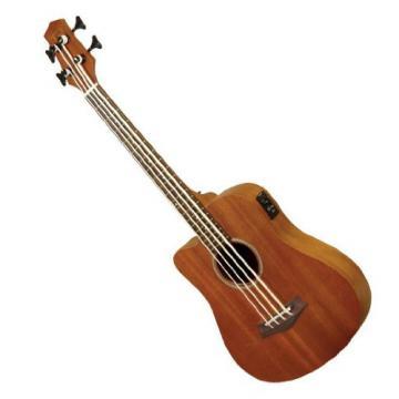 Gold Tone Left Hand Micro Fretless Bass Guitar w/ Gig Bag