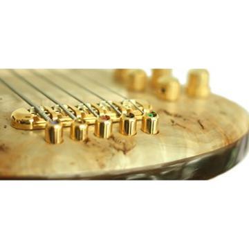 TORUN POSH 0010 Intelligently Engineered Bass Guitar