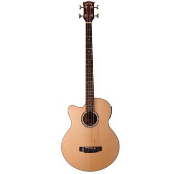Gold Tone ABG-4/L Acoustic Bass Guitar, Lefty