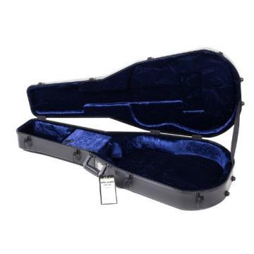 Schecter SGR-13AC   Guitar Case