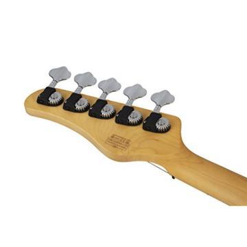 Schecter 2495 5-String Bass Guitar, Ivory