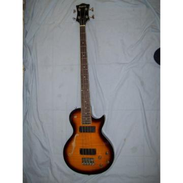 Semi hollow body Bass guitar, 4 string, LP