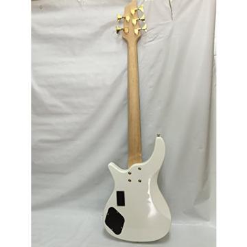 5 String Bass Guitar, Electric Bass, Free Gig Bag