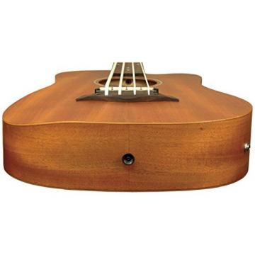 Goldtone M Bass Microbass Short-Scaled Acoustic Electric Bass w/Bag