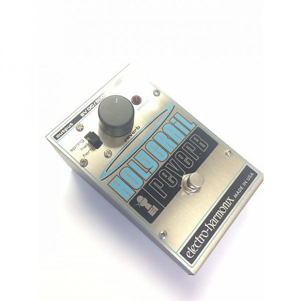 Custom Electro-Harmonix Holy Grail (Old Version)
