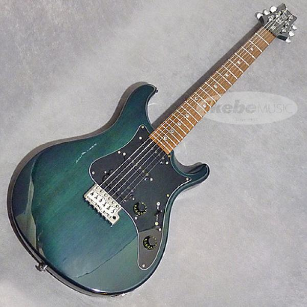 Custom PRS SE EG  2000 Green