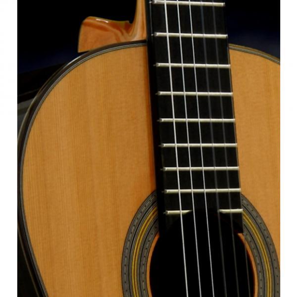 Custom Cordoba Solista cedar top with case & shipping