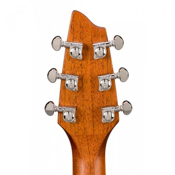 Breedlove martin guitars Atlas martin acoustic guitars Stage martin guitars acoustic D25/SRE martin guitar strings acoustic Model martin Acoustic Guitar W/HS Case