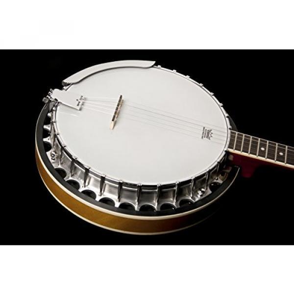 Washburn Banjo, 5 String