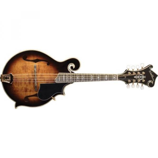 Washburn  M6SWK Florentine Cutaway Mandolin (Maple)
