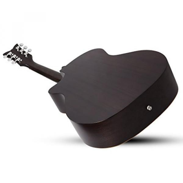 Schecter 3716 Acoustic Guitar, Satin See-Thru Black